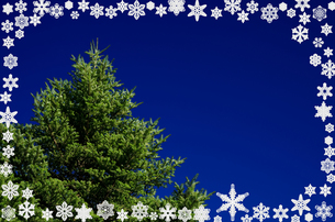 雪の結晶のフレームとモミの木の写真素材 [FYI00096796]