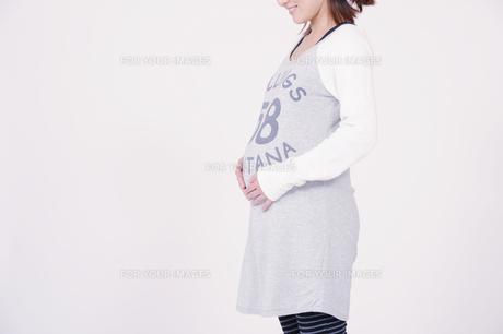 妊婦の写真素材 [FYI00097939]