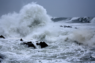 日本海の荒波の写真素材 [FYI00098177]