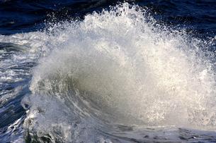 波/waveの写真素材 [FYI00098191]