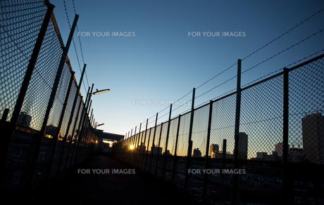 陸橋から見た日の出の写真素材 [FYI00098241]