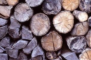 薪の束の写真素材 [FYI00098781]