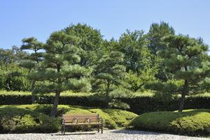 名古屋城の一角の写真素材 [FYI00098919]