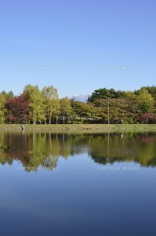駒ヶ根高原・駒ヶ池の写真素材 [FYI00099000]