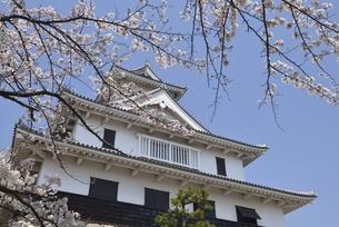 長浜城(歴史博物館)の写真素材 [FYI00099068]
