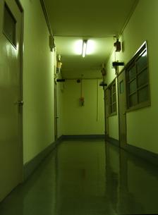 リノリウムの廊下の写真素材 [FYI00099098]