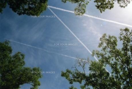 交差する空の写真素材 [FYI00099099]