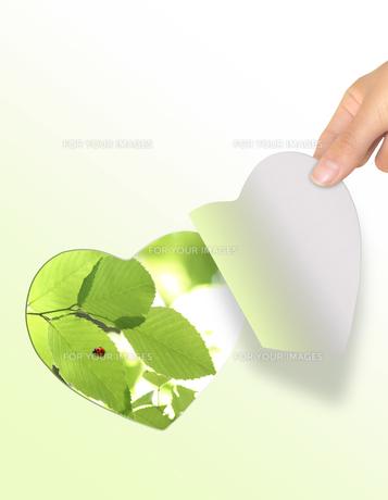 エコロジーの素材 [FYI00099361]