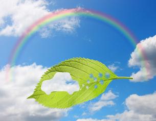 エコロジーの写真素材 [FYI00099395]