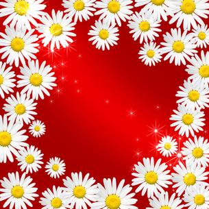 花のフレームの写真素材 [FYI00099557]