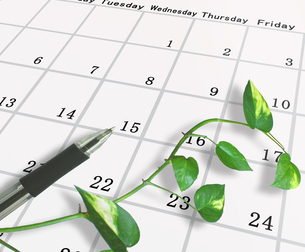 カレンダーとボールペンの写真素材 [FYI00099636]