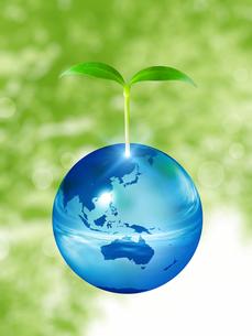エコロジーイメージの写真素材 [FYI00099991]