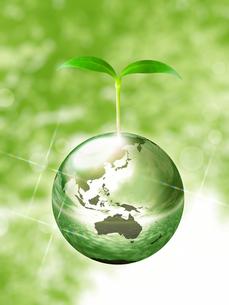 エコロジーイメージの写真素材 [FYI00100024]