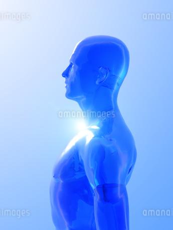 人体イメージのイラスト素材 [FYI00100027]