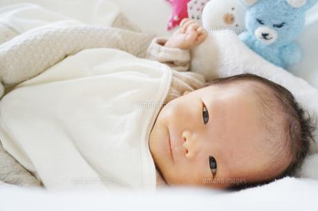 babyの写真素材 [FYI00100494]