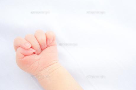 baby handの写真素材 [FYI00100502]