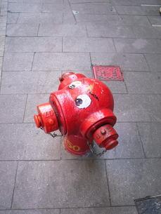 消化栓の写真素材 [FYI00100566]