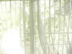 窓の写真素材 [FYI00100598]