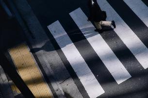 横断歩道シルエットの写真素材 [FYI00100628]