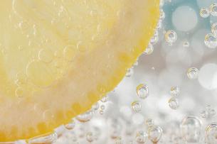 レモンの写真素材 [FYI00100895]