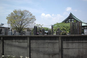 墓地の写真素材 [FYI00100979]