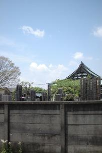墓地の写真素材 [FYI00100994]