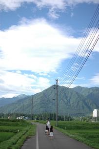 田舎道の写真素材 [FYI00100995]
