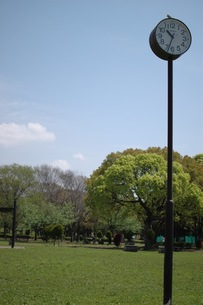 公園の時計の写真素材 [FYI00101001]