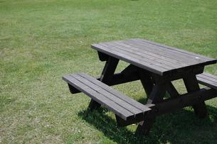 公園の木製テーブルの写真素材 [FYI00101002]