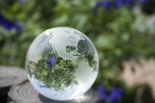 地球環境の写真素材 [FYI00101103]