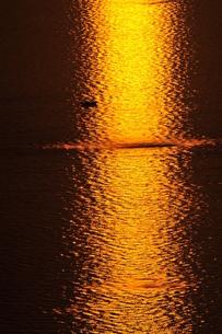 夕暮れの漁場の写真素材 [FYI00101162]