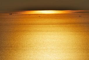 黄金の海原の写真素材 [FYI00101303]