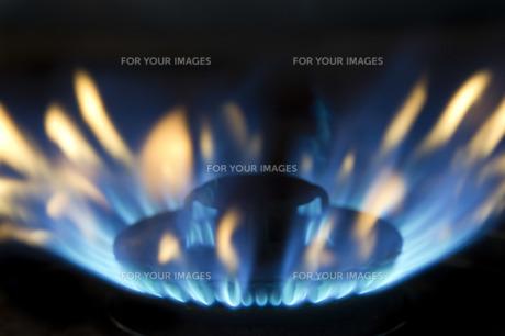 火 の写真素材 [FYI00101398]