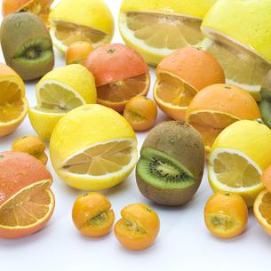 果物の写真素材 [FYI00101399]