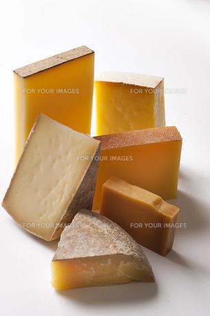 チーズの写真素材 [FYI00101410]