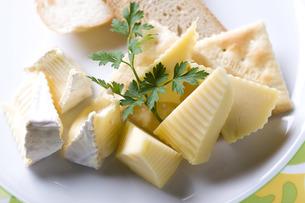 チーズの写真素材 [FYI00101413]