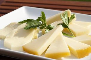 チーズの写真素材 [FYI00101424]