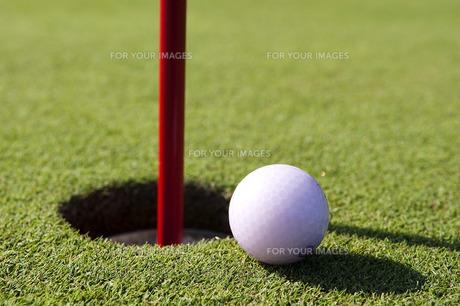 ゴルフの写真素材 [FYI00101455]