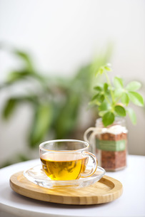お茶の写真素材 [FYI00101469]