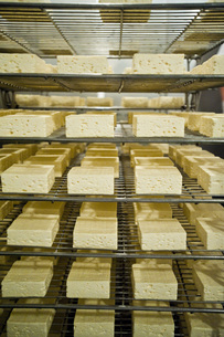 チーズの写真素材 [FYI00101504]
