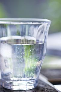 水の写真素材 [FYI00101507]