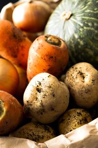 野菜の写真素材 [FYI00101511]