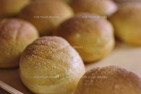 パンの写真素材 [FYI00101589]