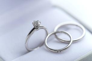 結婚指輪の写真素材 [FYI00101615]