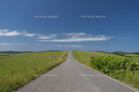 道の写真素材 [FYI00101759]