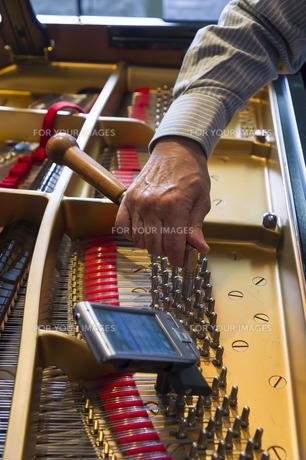 ピアノ調律の素材 [FYI00101781]