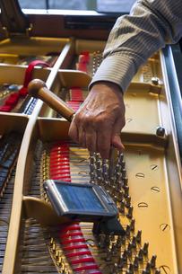 ピアノ調律の写真素材 [FYI00101781]