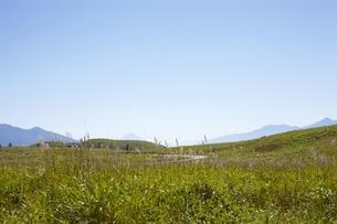 霧ヶ峰高原と富士山のイメージの写真素材 [FYI00101897]