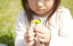 公園で花を摘む女の子の素材 [FYI00101910]