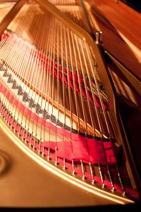 ピアノ線の写真素材 [FYI00102078]